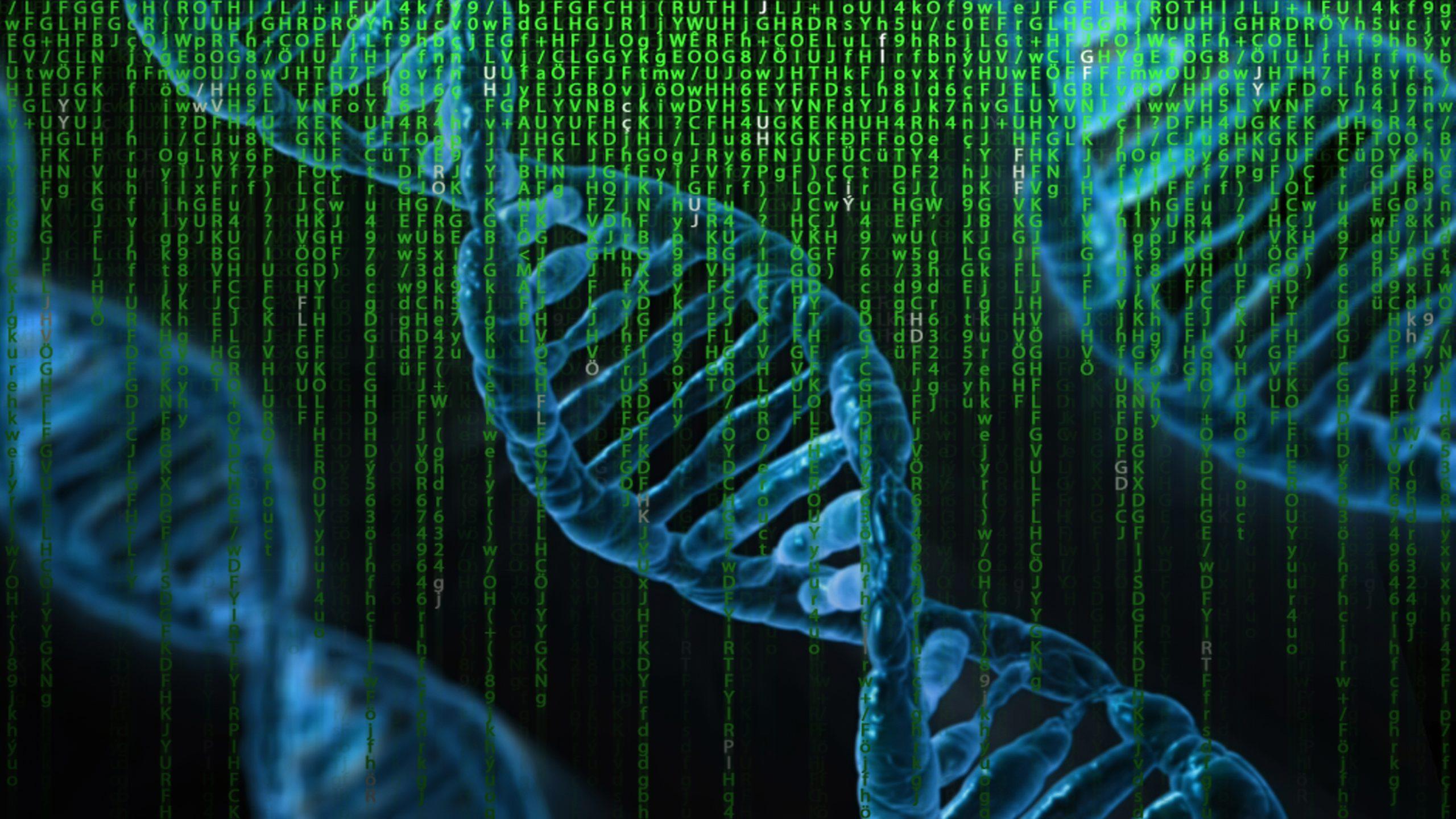 Neurofibromatose Forschung NF2 Vererbung Genetik Diagnose Bundesverband