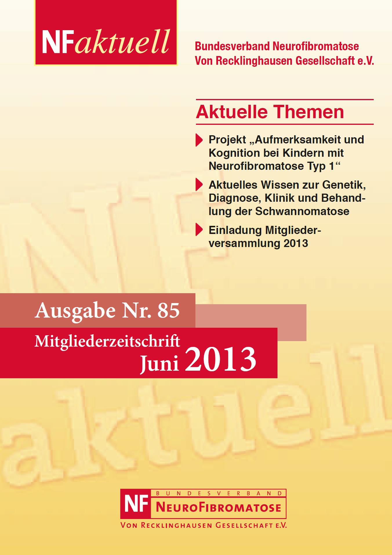 NFaktuell-85-juni-2013-titel