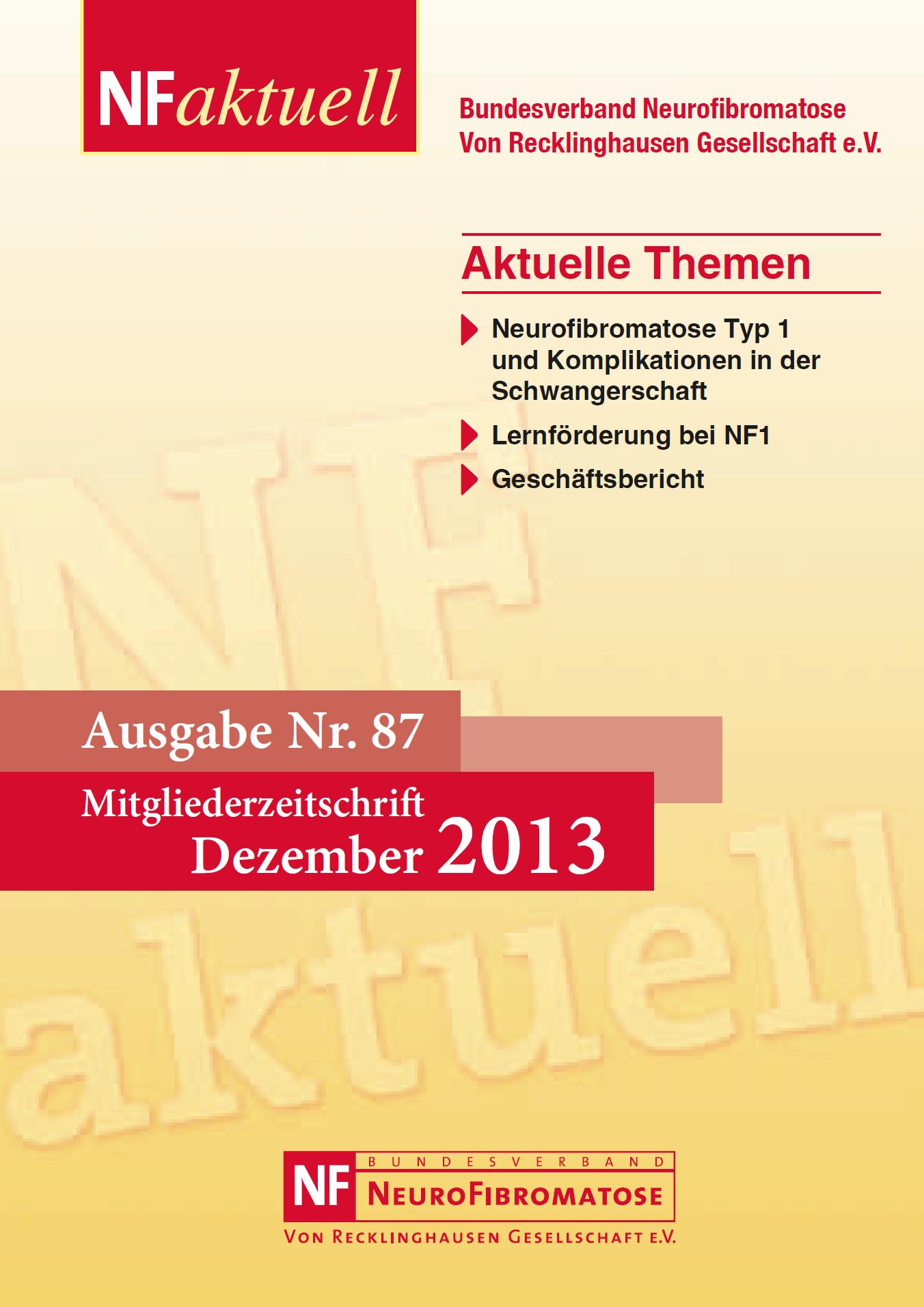 NFaktuell-87-dezember-2013-titel